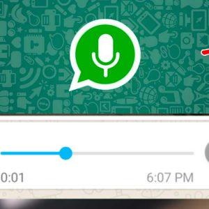 audio_whatsapp